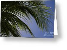 Break From The Sun Greeting Card