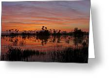 Breathtaking Florida Greeting Card