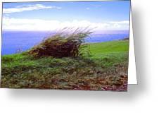 Breezy Hill Greeting Card