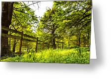 Breezy Spring Afternoon Greeting Card