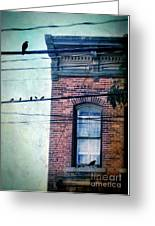 Brick Building Birds On Wires Greeting Card