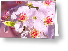 Bridal Bouquet By Jrr Greeting Card