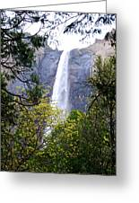 Bridal Veil Falls In Yosemite Valley In Spring- 2013 Greeting Card