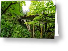 Bridge And Lush Vegetation Greeting Card