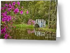 Bridge At Magnolia Plantation Greeting Card