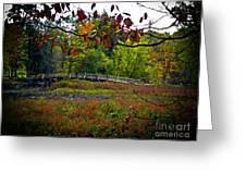Bridge In Massachusetts Park Greeting Card