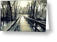 Bridge In The Wood Greeting Card