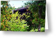 Bridge Over Ausable Chasm Greeting Card