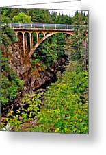 Bridge Over North Harbour River-nl Greeting Card