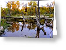 Bridge Over The Pond Greeting Card