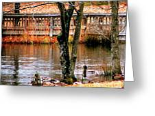 Bridge Spanning Pond Greeting Card