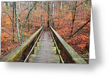 Bridge To Fall Greeting Card
