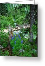 Bridge To Glory Greeting Card