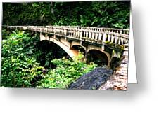 Bridge To Hana Maui Greeting Card