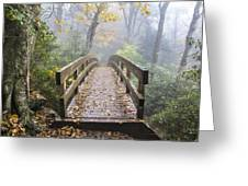 Bridge To Rough Ridge 07 Greeting Card