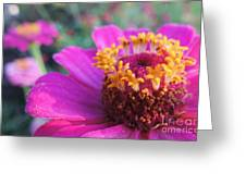 Bridgets Bloom Greeting Card