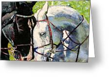 Bridled Love Greeting Card