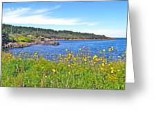 Brier Island In Digby Neck-ns Greeting Card