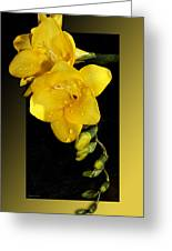 Bright And Yellow Greeting Card