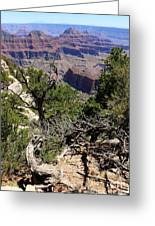 Bright Angel Point View Greeting Card
