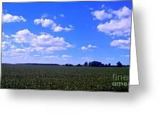 Bright Blue Sky Greeting Card