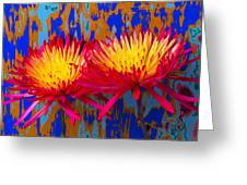 Bright Colorful Mums Greeting Card