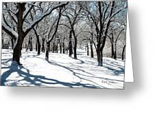 Bright Day Greeting Card