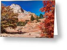 Bright Fall Colors At Zion Greeting Card