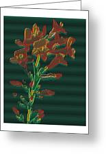Bright Flowers - 3 Greeting Card