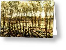 Bright Forest - Bosque Luminoso Greeting Card