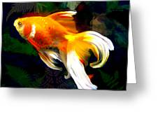 Bright Golden Fish In Dark Pond Greeting Card