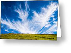 Bright Green Meadow And Deep Blue Sky Greeting Card