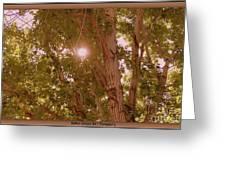 Bright Light Greeting Card