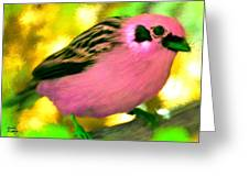 Bright Pink Finch Greeting Card