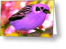 Bright Purple Finch Greeting Card
