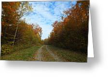 Bright Trail Greeting Card