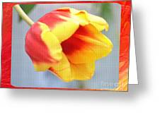 Bright Tulip Greeting Card