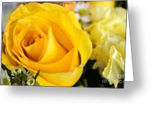 Bright Yellow Rose Greeting Card
