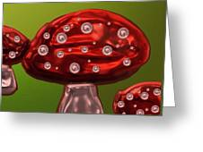 Brightest Toadstool  Greeting Card