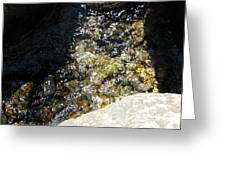 Brightly Flowing Stream Greeting Card