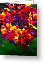 Brilliant Bouquet Greeting Card