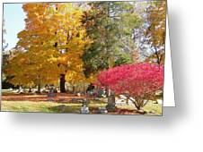 Brilliant Colors In The Cemetery  Greeting Card