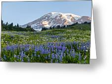 Brilliant Meadow Greeting Card