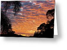 Brilliant Sunset During Winter Greeting Card