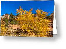 Brilliant Zion Colors Greeting Card