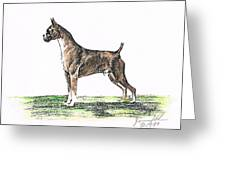 Brindle Boxer Greeting Card by Joann Renner