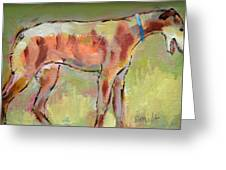 Brindle Greyhound Greeting Card by Carol Jo Smidt