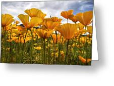 Bring On The Poppies Greeting Card
