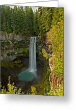 Brisith Columbia Rainforest Plunge Greeting Card