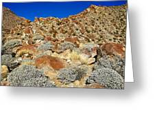 Brittlebush Leaves And Santa Rosa Mountains From Borrego Palm Canyon In Anza-borrego Desert Sp-ca Greeting Card